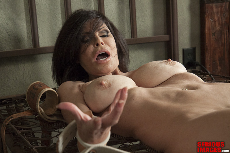 renee ashley porn tube